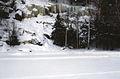 Muskoka Woods, Rosseau, Ontario in Winter - panoramio - A J Butler.jpg