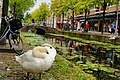 My impression of Delft, the Netherlands - panoramio.jpg