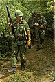NARA 111-CCV-569-CC44327 4th Infantry Division soldiers in jungle during search and destroy mission 1967.jpg