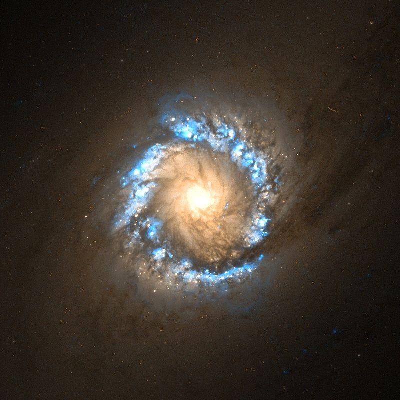 NGC 1097 center Hubble.jpg