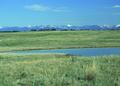 NRCSMT01008 - Montana (4867)(NRCS Photo Gallery).tif