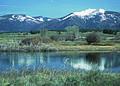NRCSMT01012 - Montana (4875)(NRCS Photo Gallery).jpg