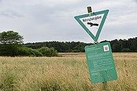 NSG Rotsohl und Thomassee von Dudenhofen03.jpg