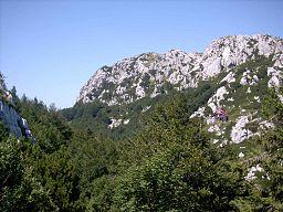 Nacionalni park Risnjak (Berghutte unterhalb des Gipfels des Risnak)