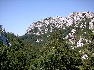 7th Army (Kingdom of Yugoslavia) - Image: Nacionalni park Risnjak (Berghutte unterhalb des Gipfels des Risnak)