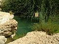 Nahal Prat 08.jpg