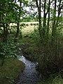 Nant Meidrum near Llangeitho, Ceredigion - geograph.org.uk - 898602.jpg