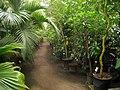 National Botanic Garden of Belgium (Meise) - IMG 4405.JPG