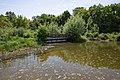 Nationalpark Donau-Auen Lobau Nationalparkhaus Teich Mai 2016 02.jpg
