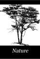 Nature (IA naturevolume01unkngoog).pdf