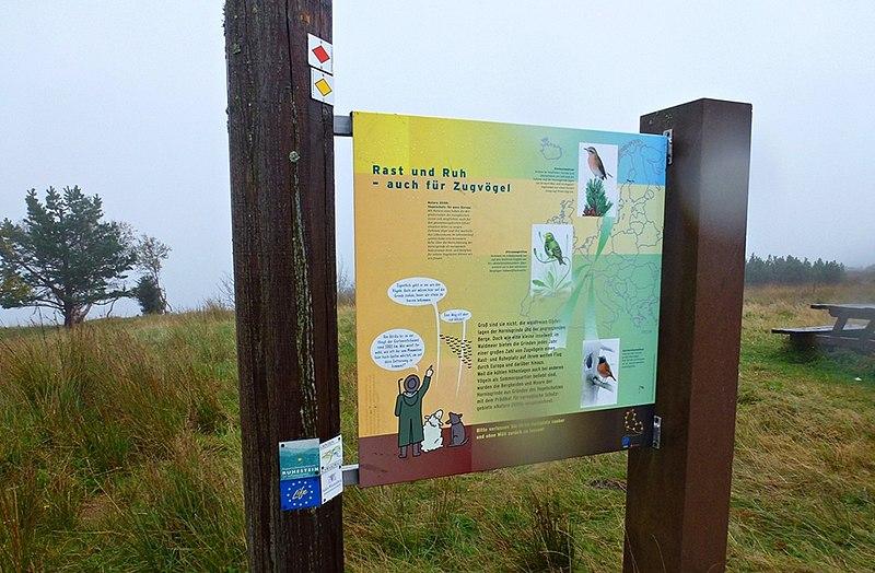 File:Naturschutzzentrum Ruhestein im Schwarzwald - panoramio (3).jpg