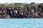 Navío varado en isla Santa Cruz, islas Galápagos, Ecuador, 2015-07-26, DD 53.JPG
