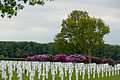 Netherlands American Cemetery and Memorial-2571.jpg
