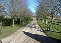 Newnton House driveway - geograph.org.uk - 320578.jpg