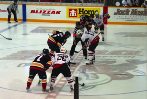 Niagara IceDogs -  Niagara IceDogs in action at home versus Barrie Colts.