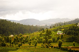 The Nilgiris District - The Nilgiris was preferred by the British for its moderate 'English-like' climate.
