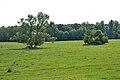 Nordkirchen-090806-9360-Park.jpg