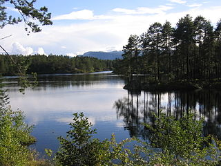 Nissedal Municipality in Vestfold og Telemark, Norway