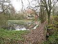 Nový Dům, rybník.jpg