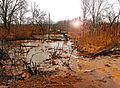 Ohio Valley Mushroom Farm, Acid-Mine Drainage (AMD) (13670890375).jpg