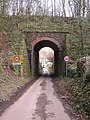 Old Railway Bridge - geograph.org.uk - 127989.jpg