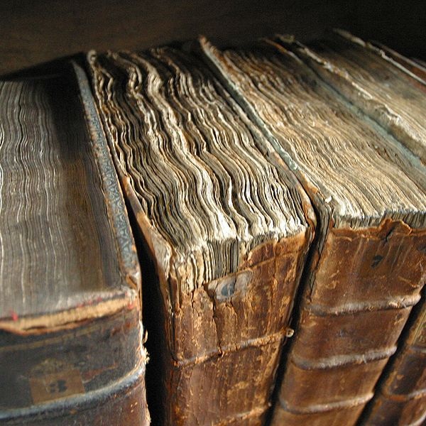 Old book bindings at the Merton College library. Taken by user (Tom Murphy VII) Cropped by BenAveling en CC 2.0 sur Wikicommons