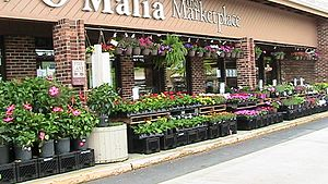 Marsh Supermarkets - O'Malia's Food Market at 4755 E. 126th Street in Carmel, Indiana in 2010