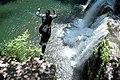 One Giant Leap (14511026633).jpg