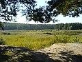 Opening near Paniowki - panoramio.jpg