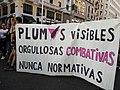 Orgullo Crítico 2018 - Plumas 2.jpg