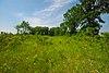 Oshkosh-Larsen Trail Prairies.jpg