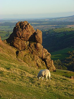 Outcrop on Caer Caradoc - geograph.org.uk - 1006438