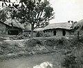 Ox-Cart in a Native Village near Gushkara (BOND 0349).jpg