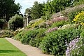 Oxford Botanic Garden, Flowers.jpg