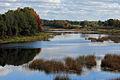 Pärnu jõgi Tori sillalt.jpg