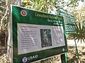 P70 Lawachara National Park, In Moulovibajar, Bangladesh.jpg