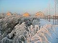 Pallasweg im Winter - panoramio.jpg