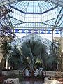 Palm House - Botanic Gardens Adelaide.JPG