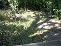 Palmetto FL Emerson Point Portavant Mound top01.jpg