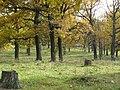 Panoramio-39827408.jpg