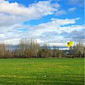 Parachute Practice at Magnuson Park in Seattle.jpg