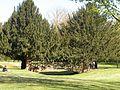 Parc napoleonThionville.JPG