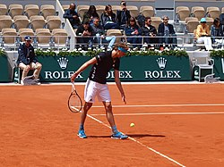 Paris-FR-75-open de tennis-2019-Roland Garros-court Chatrier-28 mai-Zverev-02.jpg