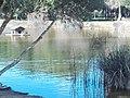 Parque Infanta Elena (Sevilla) 16.jpg