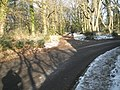 Path and road junction in Oxted Green - geograph.org.uk - 1626861.jpg