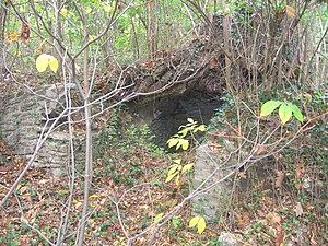 Belfield (Philadelphia) - The ruins of Peale's cave in 2010.