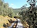 Pelion old railway.jpg