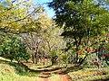 Penhalonga em Manica - panoramio - Nelson Deolinda Amin… (11).jpg