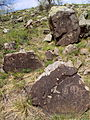 Petroglyphs on Mount Baga-Zarya 06.JPG