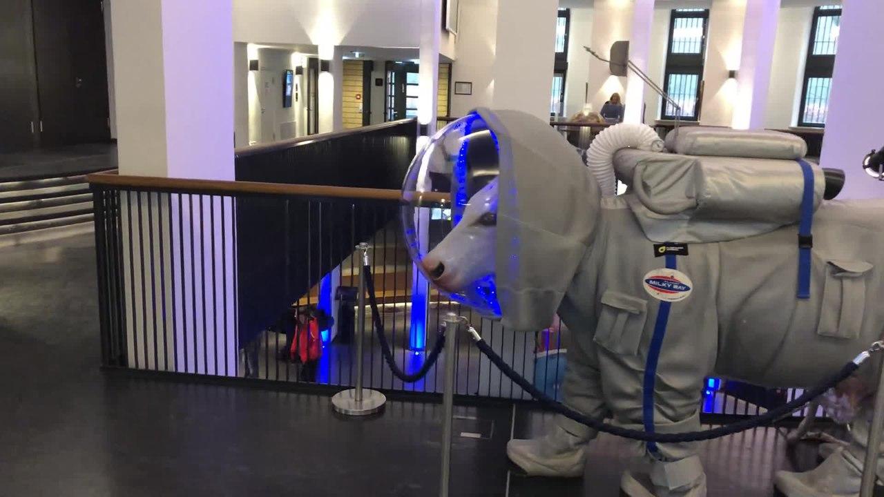 planetarium hamburg programm 2019